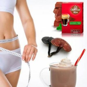 Chocolate Slim цена