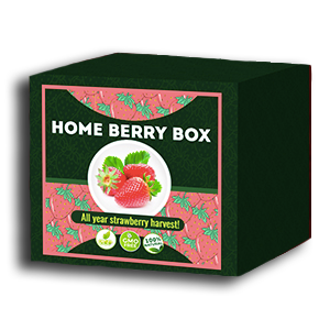 Home Berry Box комплект за отглеждане на ягоди - текущи отзиви на потребителите 2020 - как да го използвате, как работи, становища, форум, цена, къде да купя, производител - България